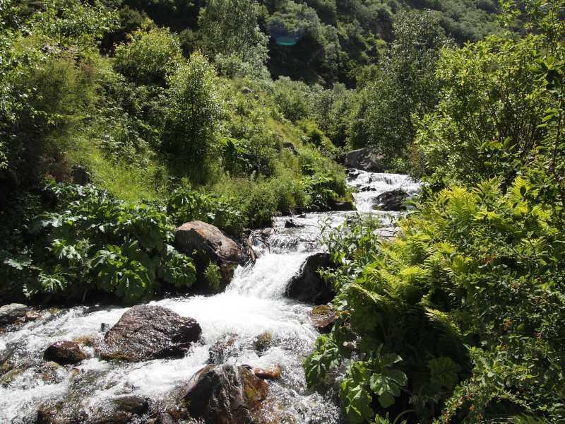 A creek in Kazbegi